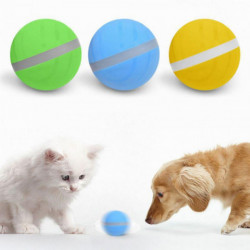 LED Pet Motion Rolling Ball